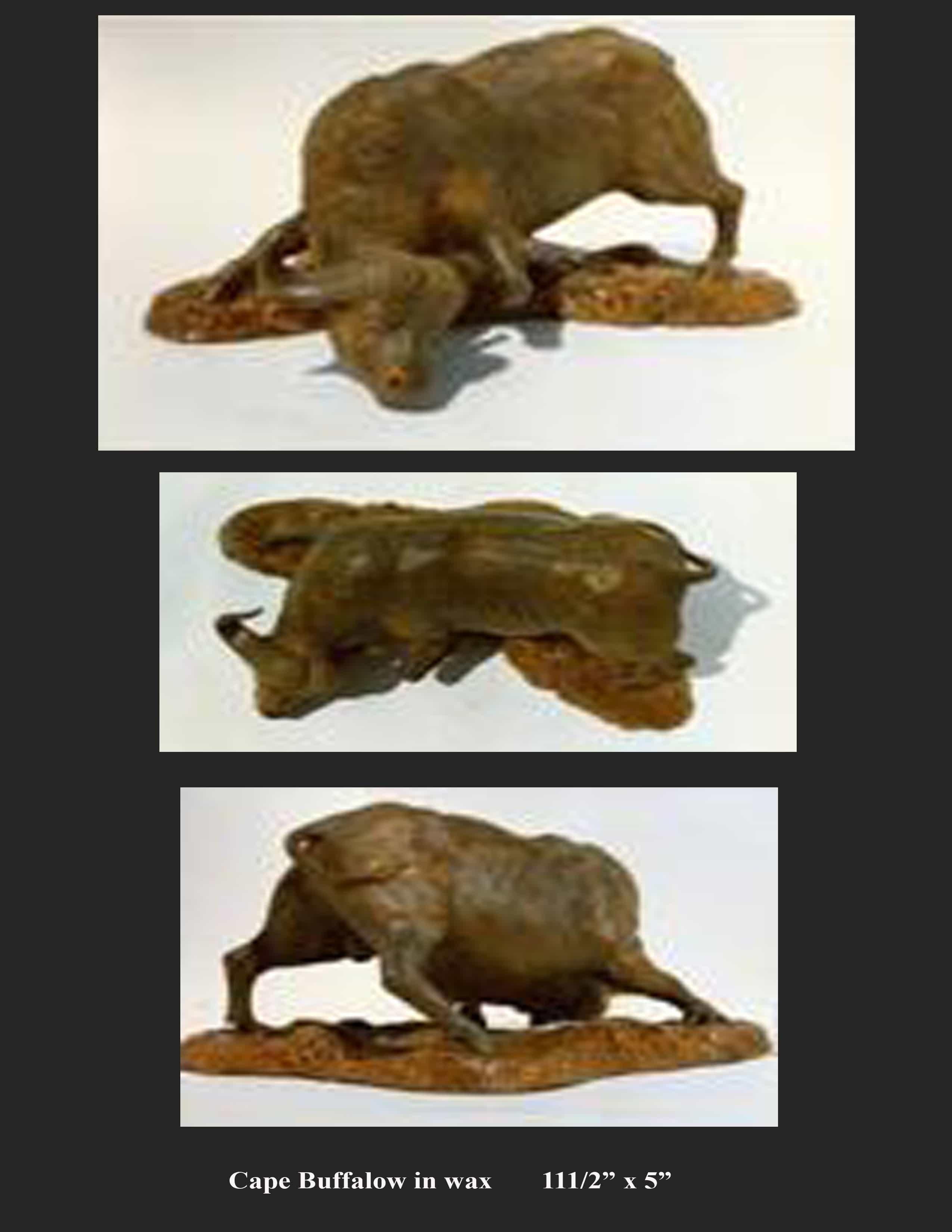 Cape Buffalo - Commissioned Wax Model Image